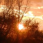 Sonnenuntergang Illmitz